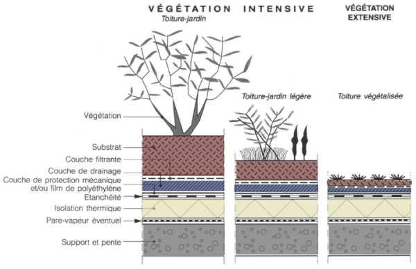 Célèbre Toiture végétalisée d'une habitation en conteneurs (toit végétal) ZT49